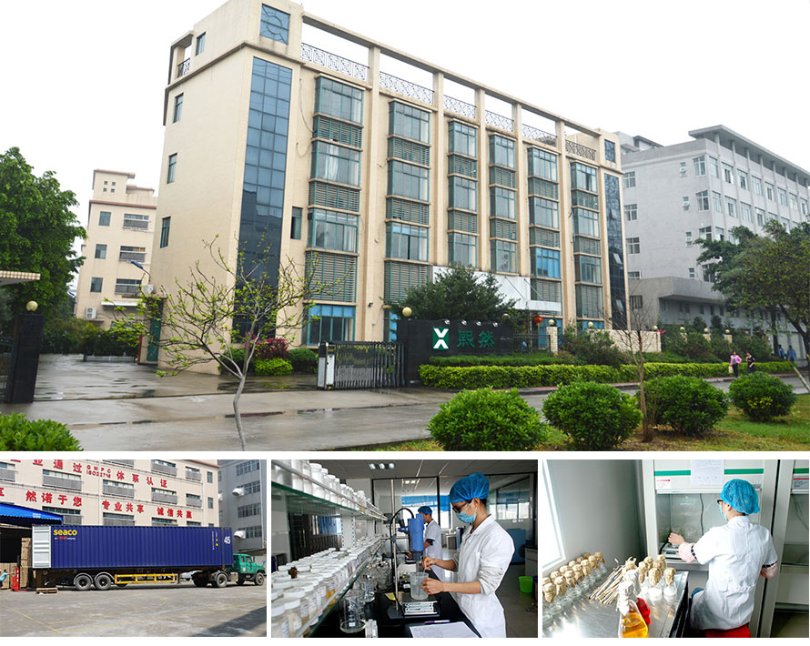 XIRAN Cosmetics FACTORY
